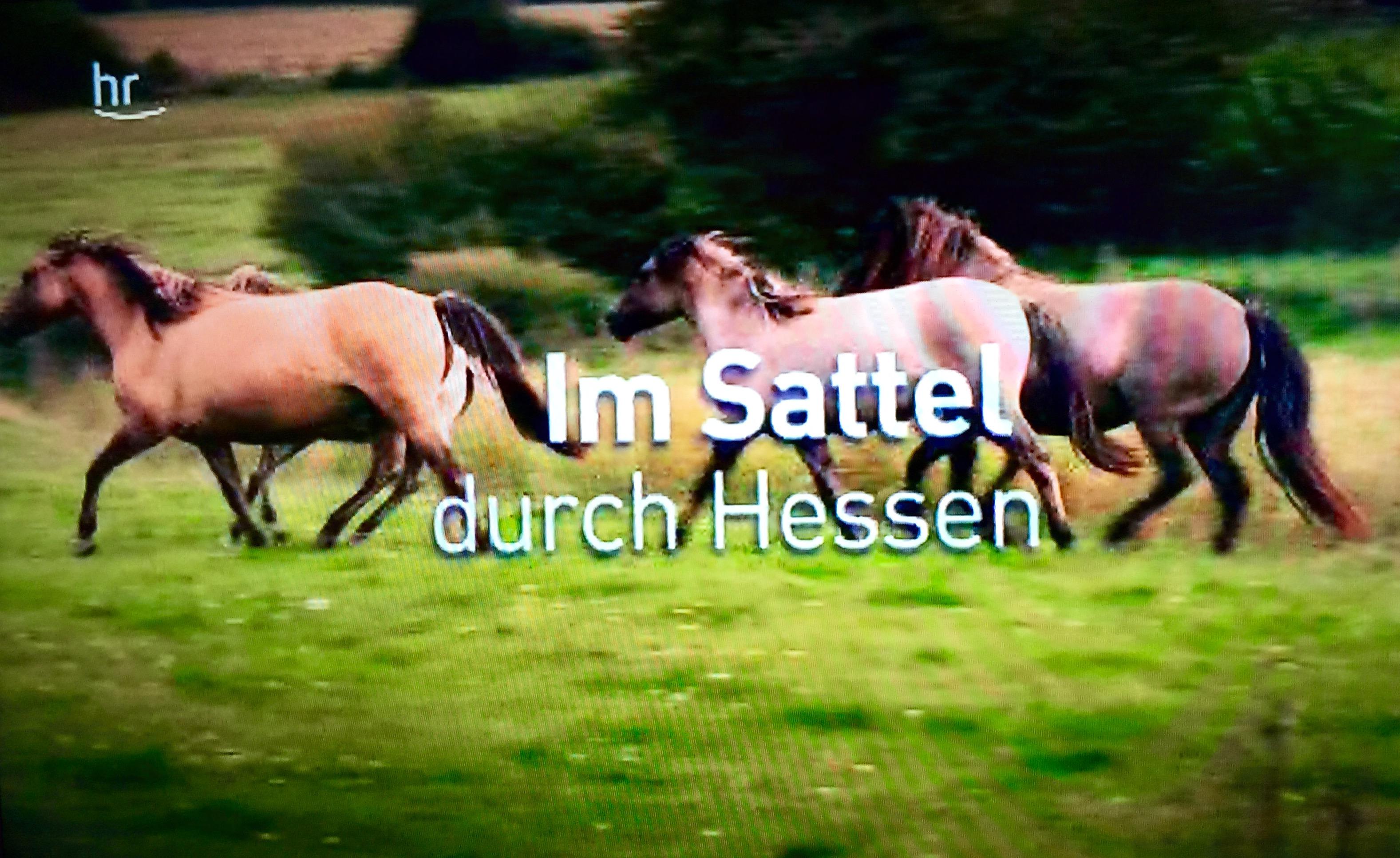 Hessen Sommerküche : Medienkorrespondenz: heimat rundfunk hr: 1001 sendung die ein hesse